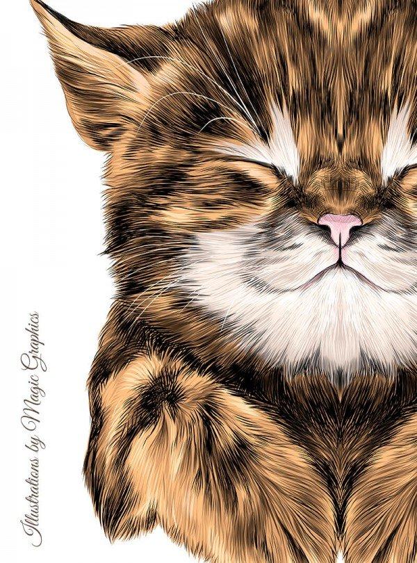Yoda Cat  Дамска Бяла Тениска с дизайнерски принт котки