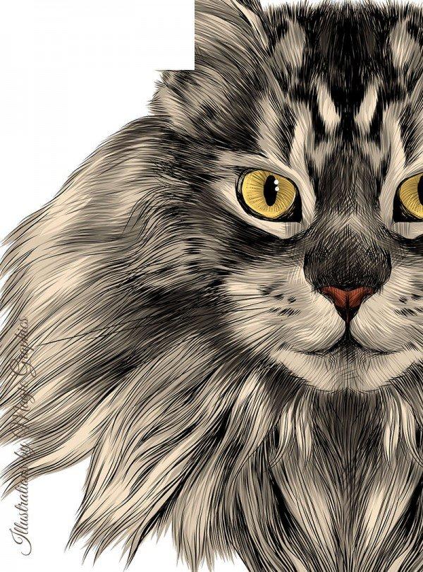 Gorgeous Cat Дамска Бяла Тениска с дизайнерски принт котки