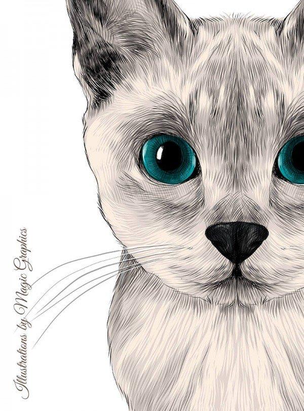 Playfur Cat Дамска Бяла Тениска с дизайнерски принт котки