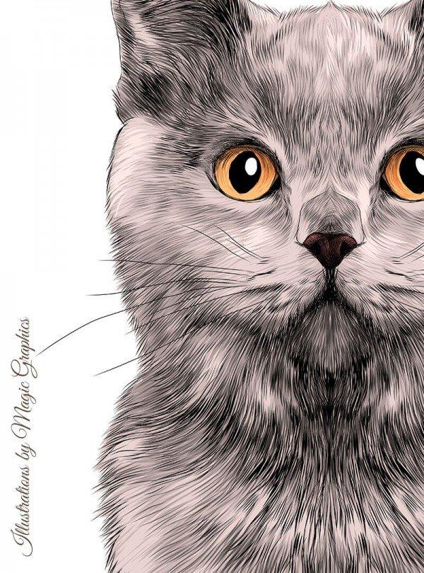 Purrfect Cat Дамска Бяла Тениска С Дизайнерски Принт Котки