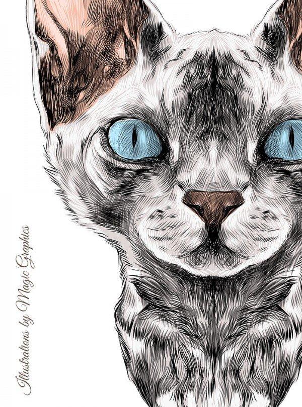 Right Meow Cat Дамска Бяла Тениска с дизайнерски принт котки