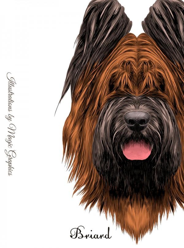 Briard Dog Дамска Бяла Тениска с Дизайнерски Принт
